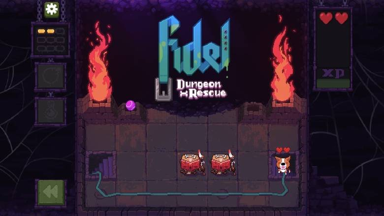 «Fidel Dungeon Rescue»: who let the dogs out?