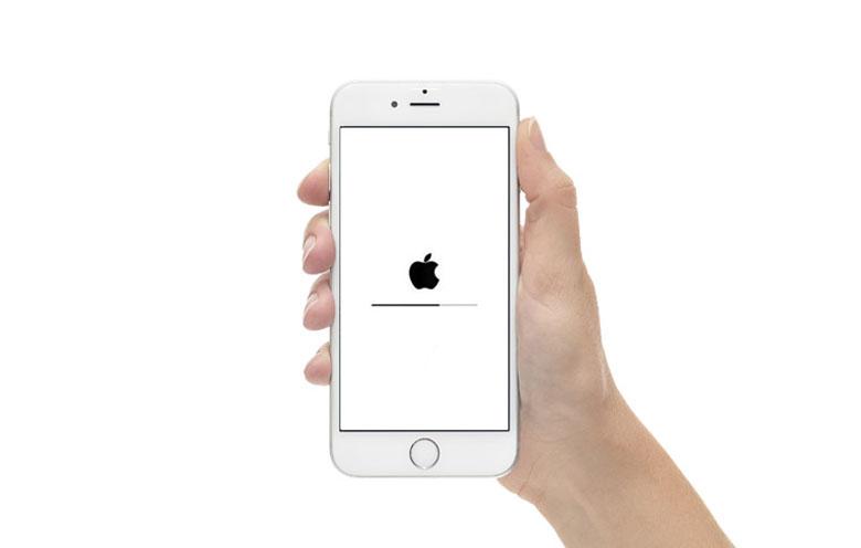 iPhone 6 не включается