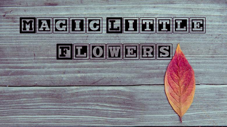 Magic Little Flowers — мобильная игра для детей в возрасте 4-6 лет от Radiobush