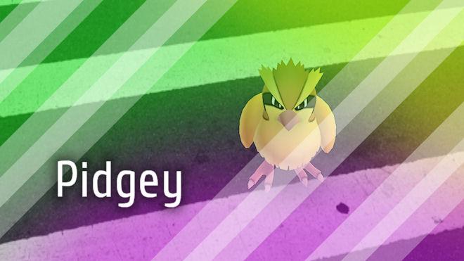 Покемон Пиджей (Pidgey) #16