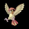 Характеристики покемона Pidgeotto #17